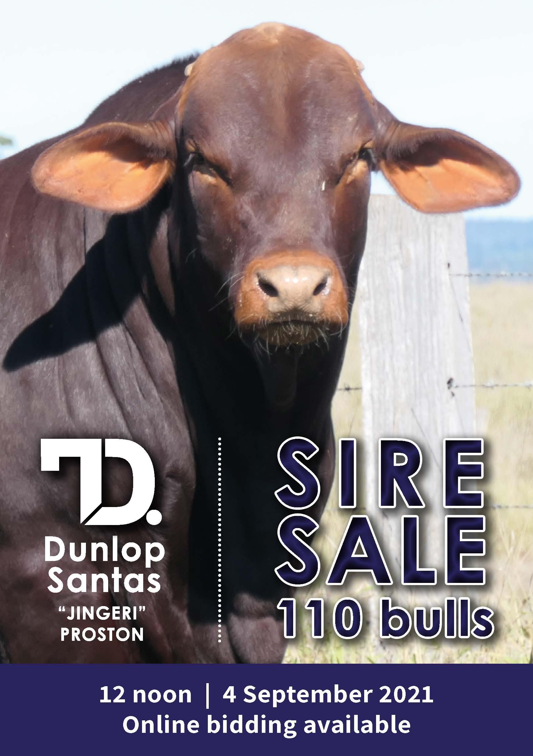Dunlop Santas 2020 catalogue cover